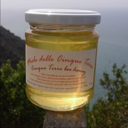 Miele delle Cinque Terre 250 gr. 1 Kg (4x250g.)